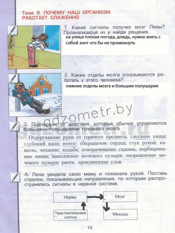 Гдз по окружающему миру 4 класс рабочая тетрадь вахрушев данилов бурский раутиун